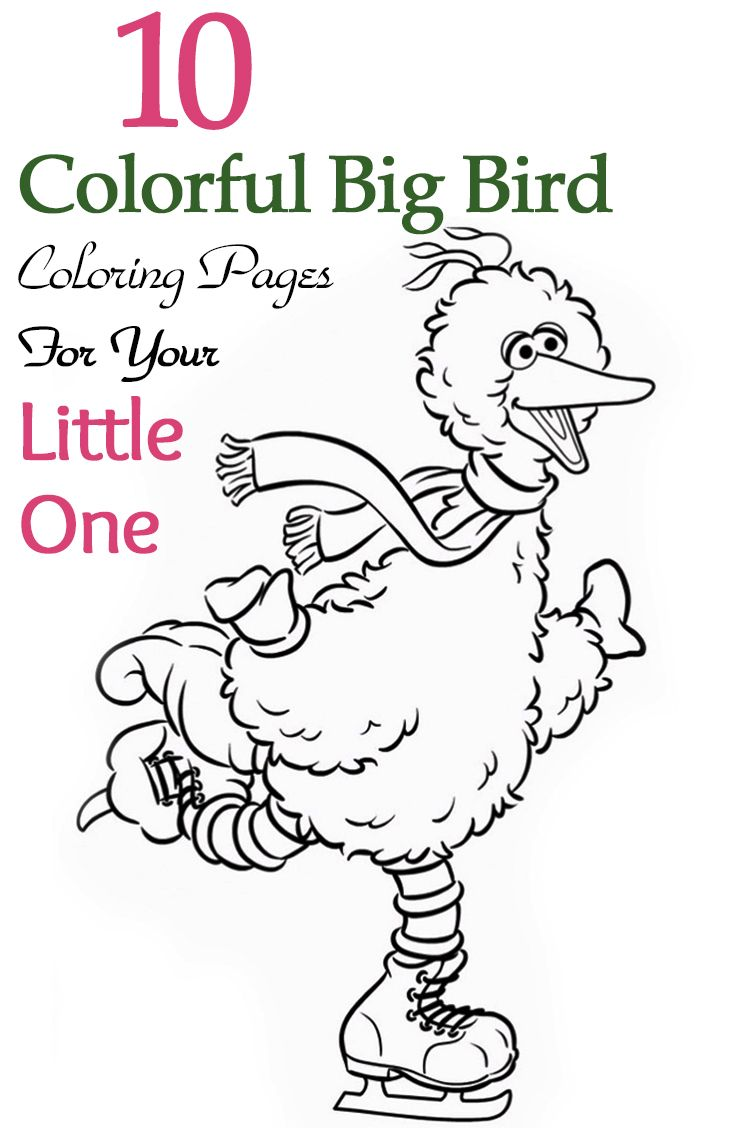 Top 10 Colorful Big Bird Coloring Pages For Your Little One