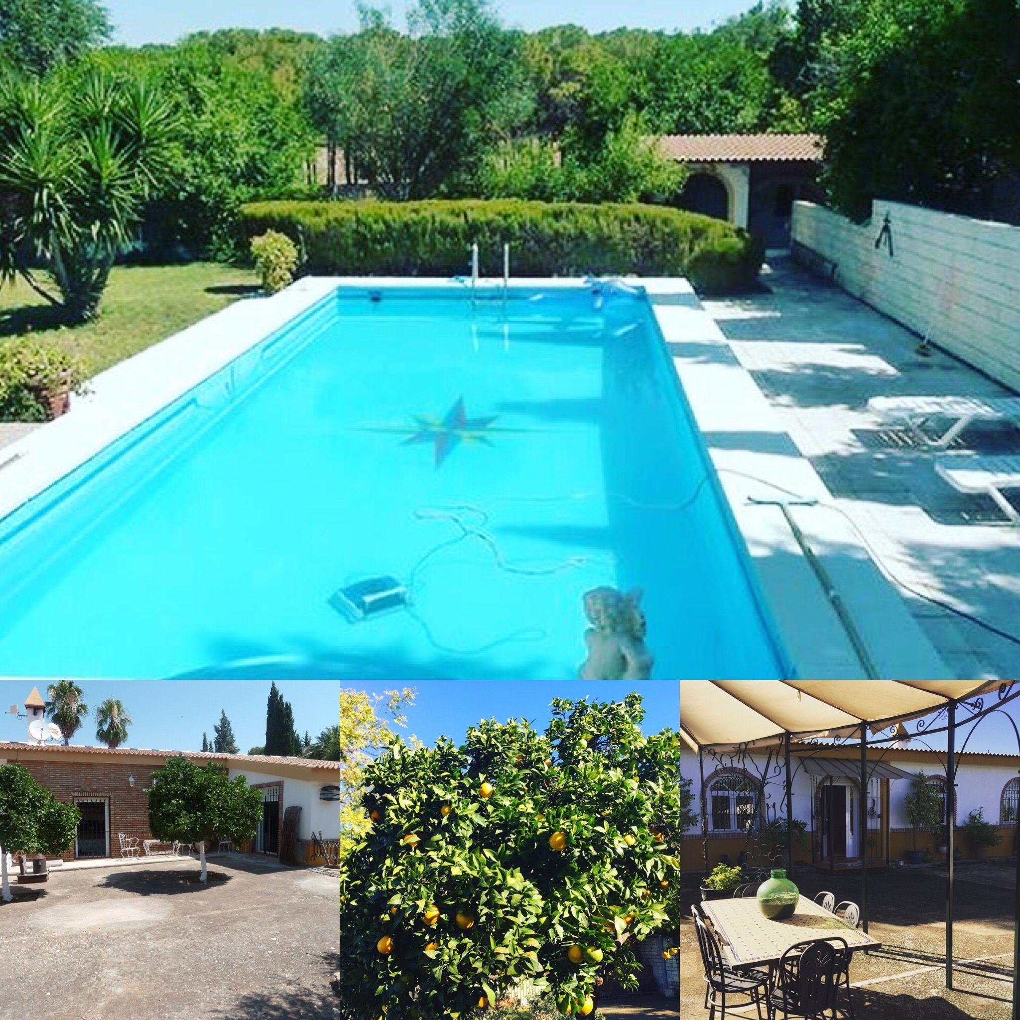 Venta mairena del alcor sevilla casa 3 dormitorios boxes para caballos piscina a - Piscinas en el campo ...