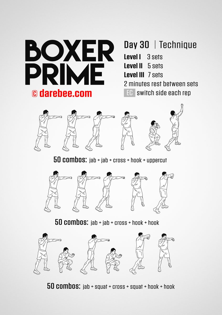 Boxer Prime 30 Day Fitness Program Boxing Workout Shadow Boxing Workout Kickboxing Workout