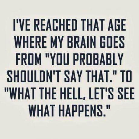 Quarter life crisis hit me like   Funny quotes, Sarcastic ...