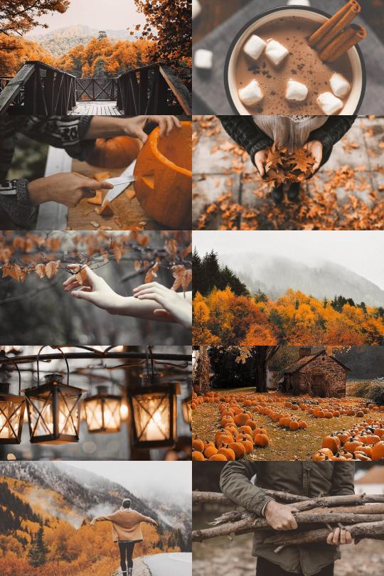 Skcgsra: U201c Make Me Choose: Spring Or Autumn U201d