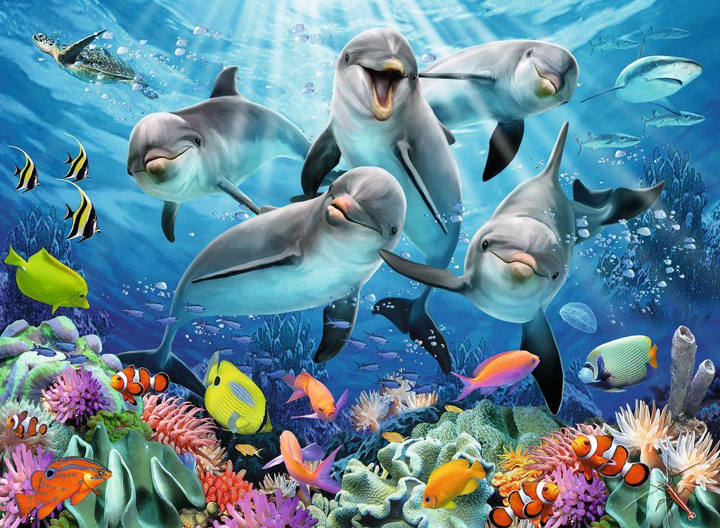 Delfine Im Korallenriff Erwachsenenpuzzle Puzzle Produkte Delfine Im Korallenriff Tiere Malen Korallenriff Leinwandkunst