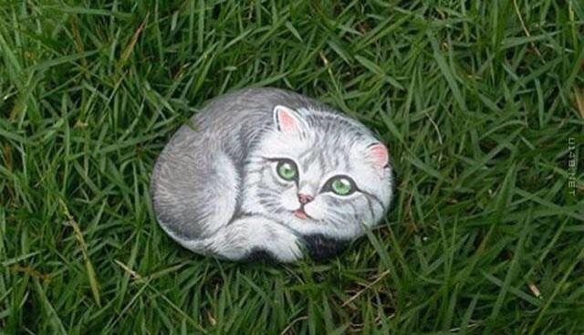 Kedi taş boyama