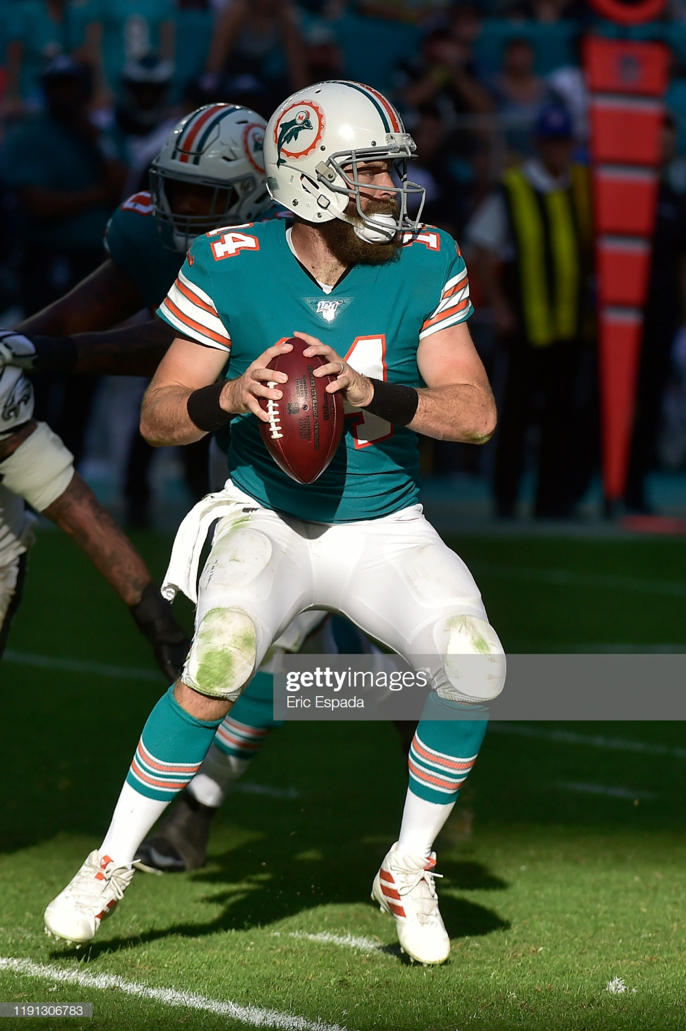 Ryan Fitzpatrick Of The Miami Dolphins Drops Back To Pass During The Dolphins Miami Dolphins Miami Dolphins Football