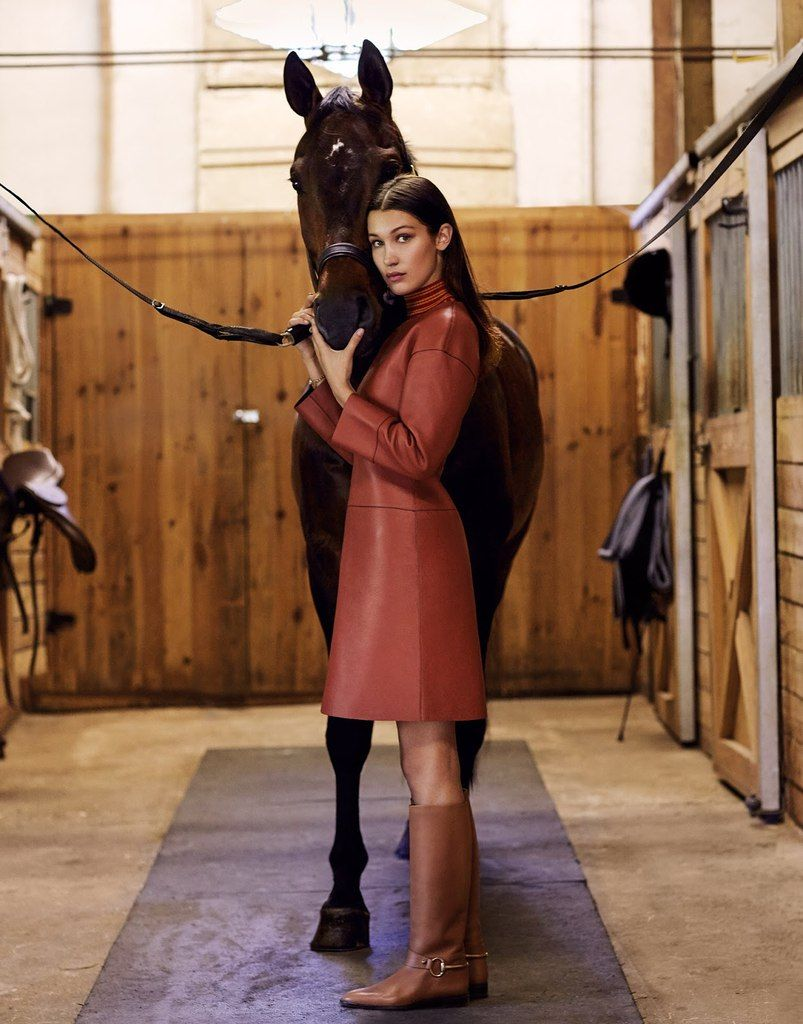 Image result for bella hadid equestrian