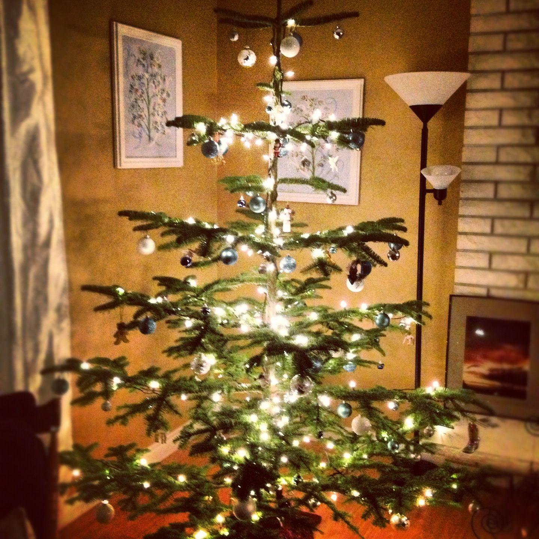Natural Noble Fir Christmas Tree   Christmas home   Pinterest ...