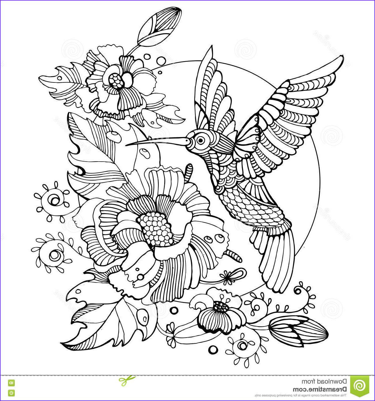 45 Elegant Images Of Hummingbird Coloring Pages For Adults Deer Coloring Pages Bird Coloring Pages Coloring Pages Nature