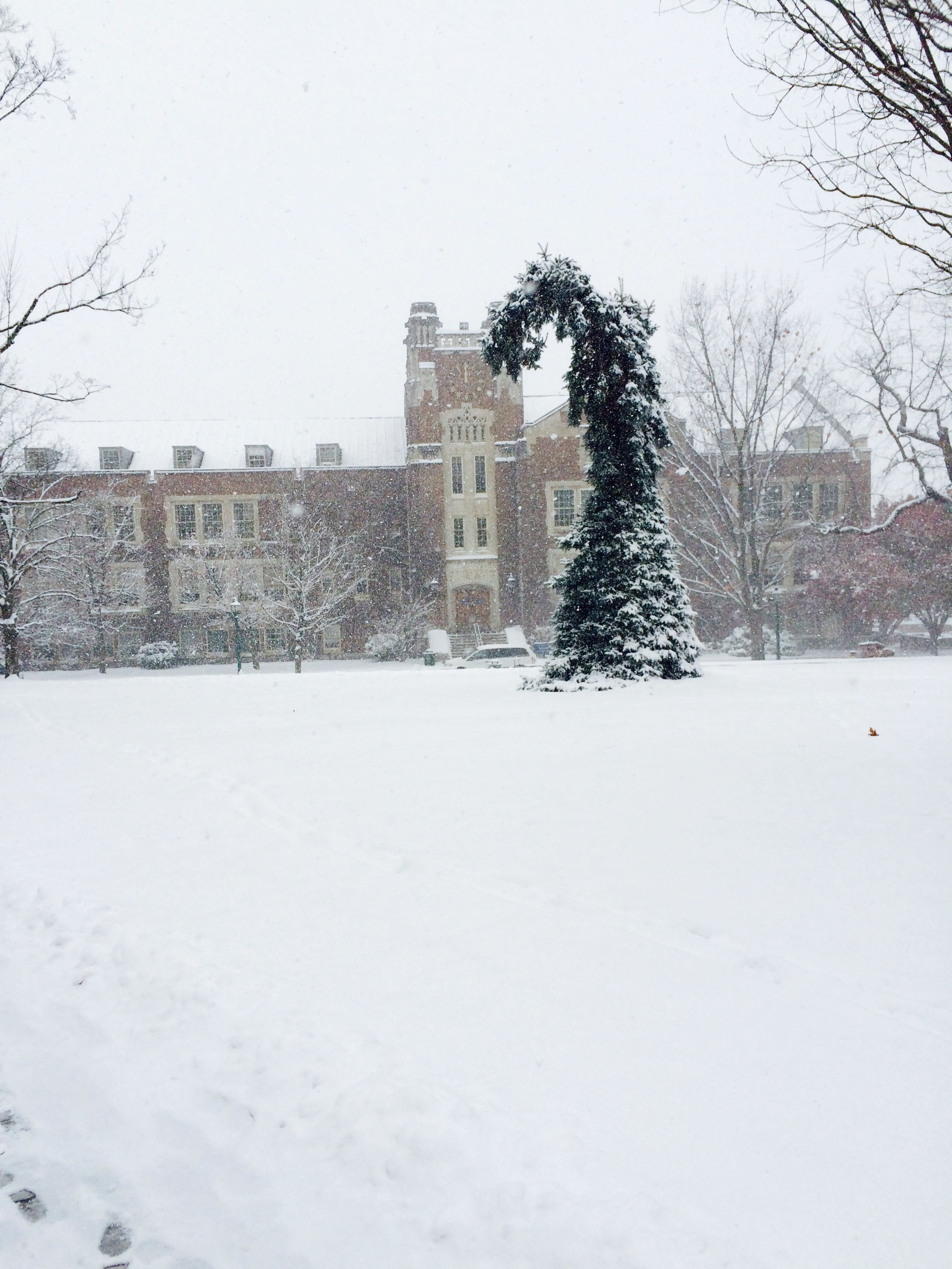 This Photo Encompasses Two Major Things That Symbolize Geneseo To Me