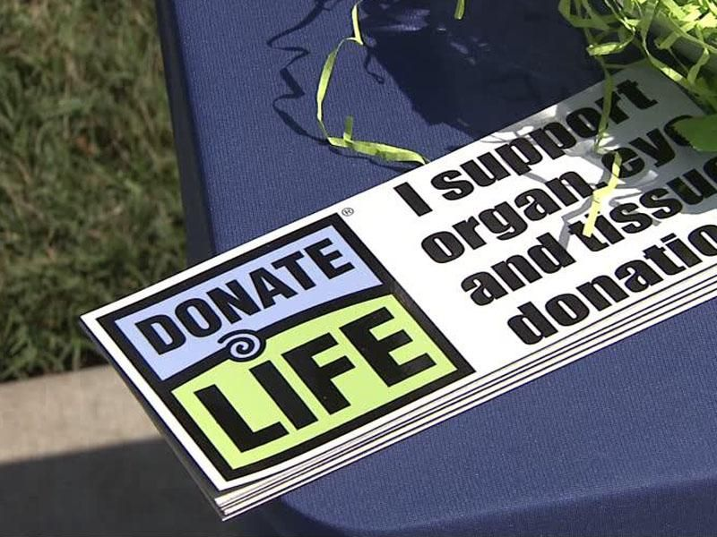 Organ Transplant Recipients Press Need For More Donors Organ Donor Organ Transplant Donor