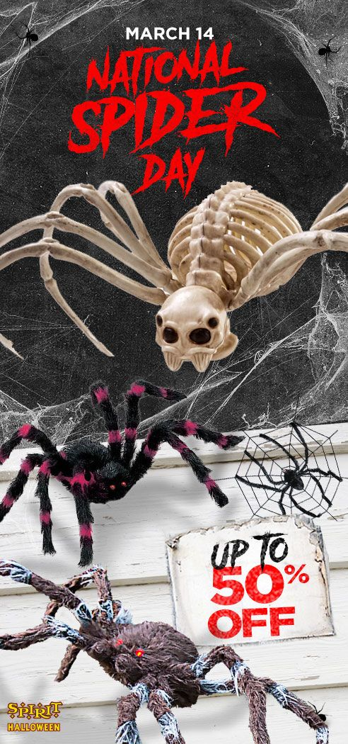 Celebrate NationalSpiderDay by saving up to 50 off on
