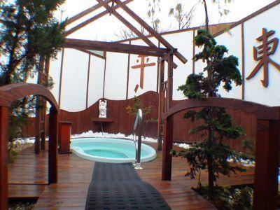 Japan Oasis Hot Tub Garden Garden Photos Patio