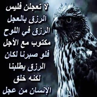 Desertrose رزقكم في السماء وما توعدون Arabic Quotes Quotes