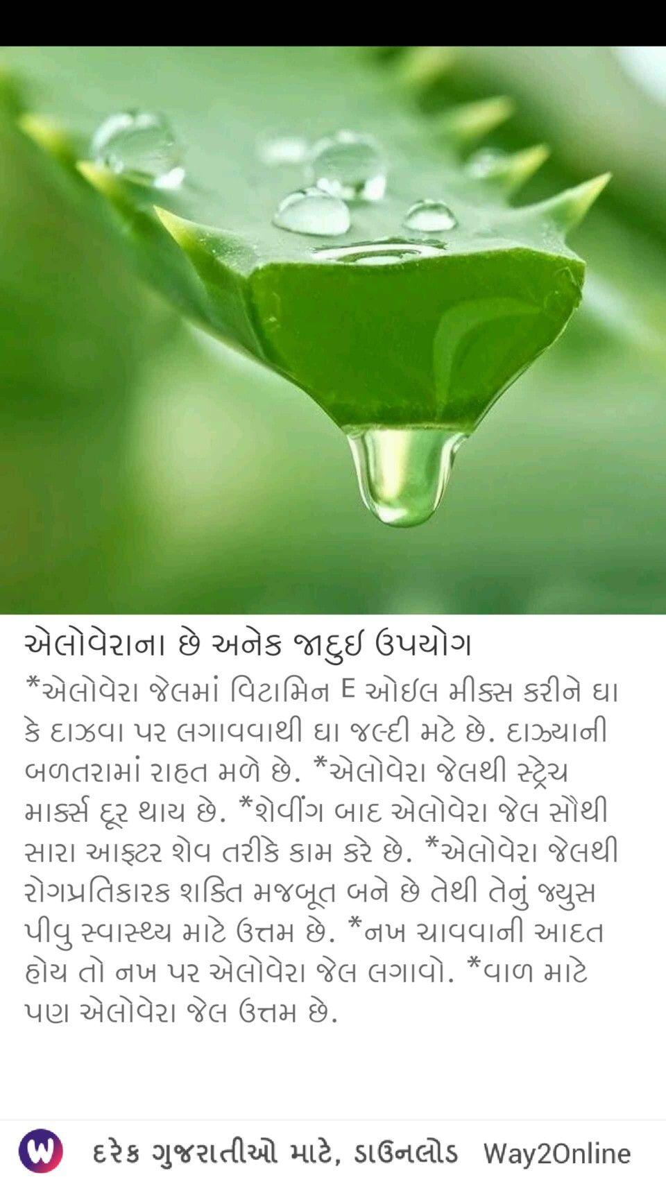 Pin by Savseta Chirag on education Herbs, Education