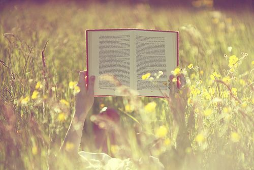 Get lost in a good book...Can't wait for my field to turn back into looking like this when spring hits