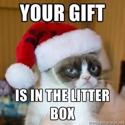 Grumpy Cat Christmas Meme 004 in the litter box | Grump Cat ...