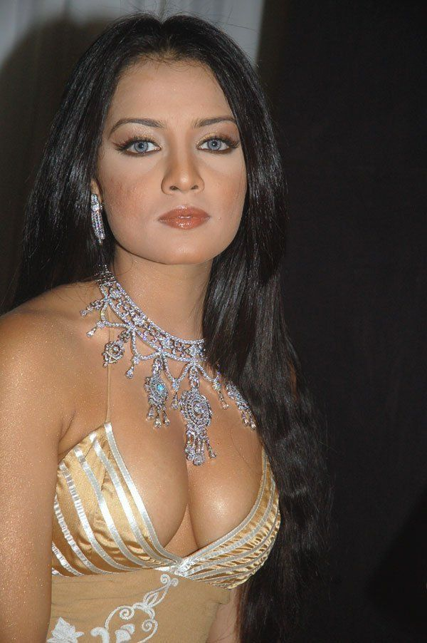 Bollywood celina actress jaitley