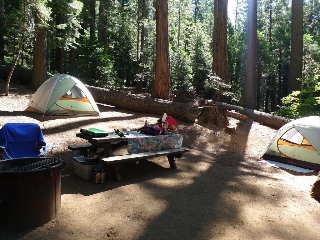 Calaveras Big Trees State Park & Car Camping: Calaveras Big Trees State Park | Park
