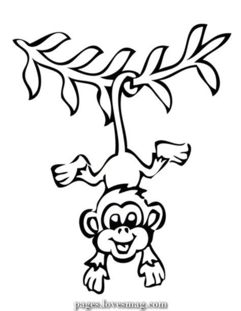 monkey coloring pages mit bildern  affenzeichnung