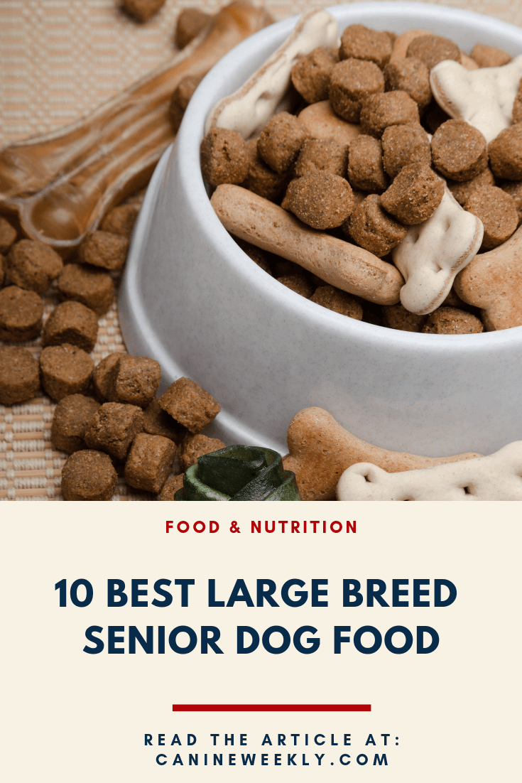 The Best Senior Dog Food for Large Dogs in 2020 Dog food