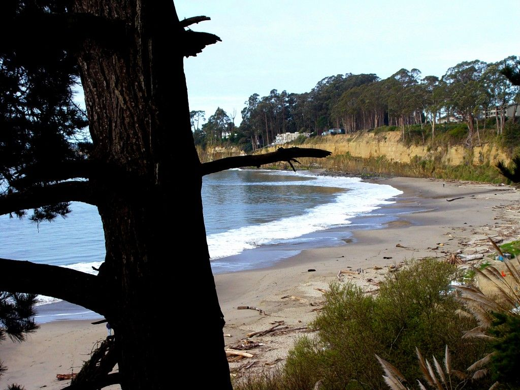 New Brighton State Beach Capitola Ca The Is In Town Of Just South Santa Cruz Take Park Avenue Exit Off Hwy Turn