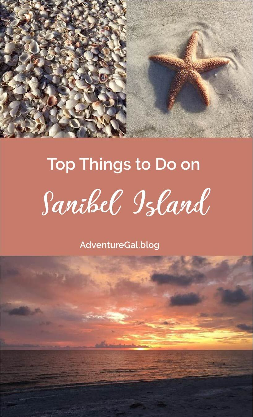 6 Things To Do On Sanibel Island
