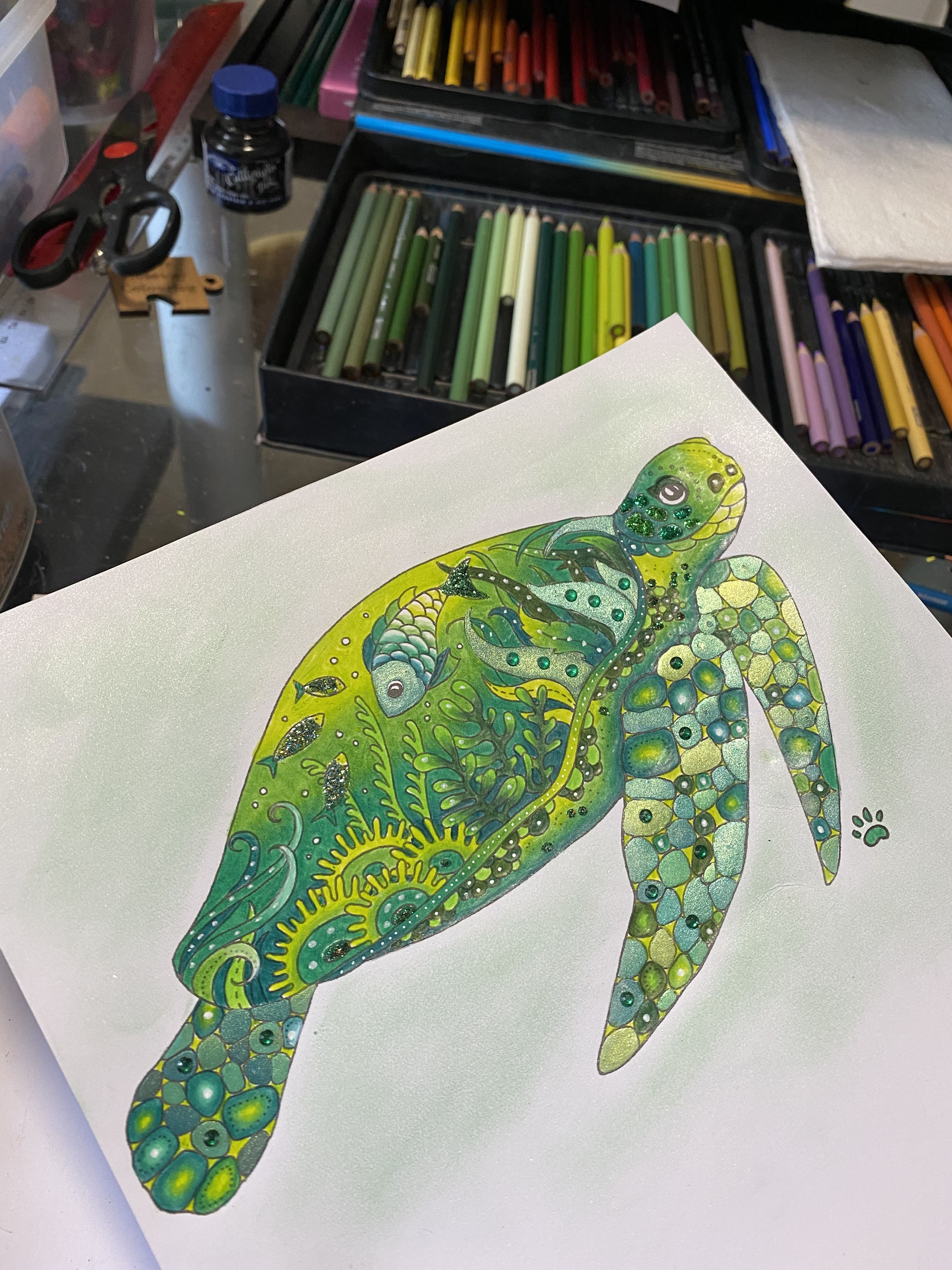 Terry Turtle Johanna Basford Coloring Book Johanna Basford Johanna Basford Enchanted Forrest