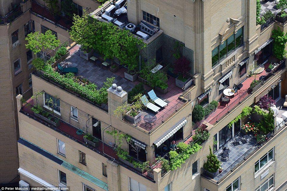 The secret sky gardens of New York uncovered Sky garden