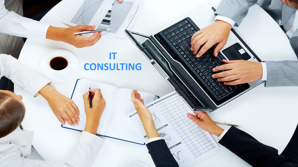 It Consulting Business Development Consultant Everything You Should Know Consulting Business Program Management Business Development