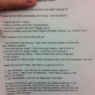 The Best Resume Ever Hire This Guy Hes Shit Lol