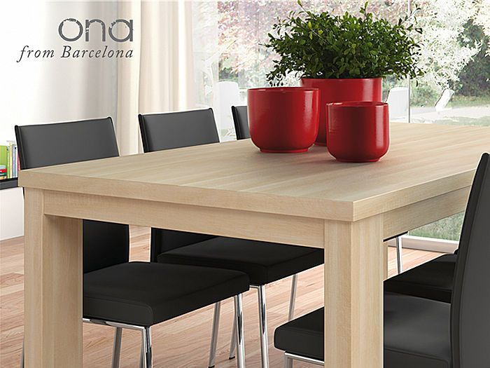 Mesa moderna de comedor for the home pinterest mesa for Comedores a buen precio