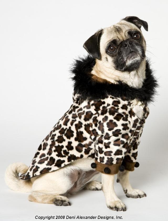 Leopard Doggie Coat Pug Pugs Puppies Dogs Pups Puppy Dog