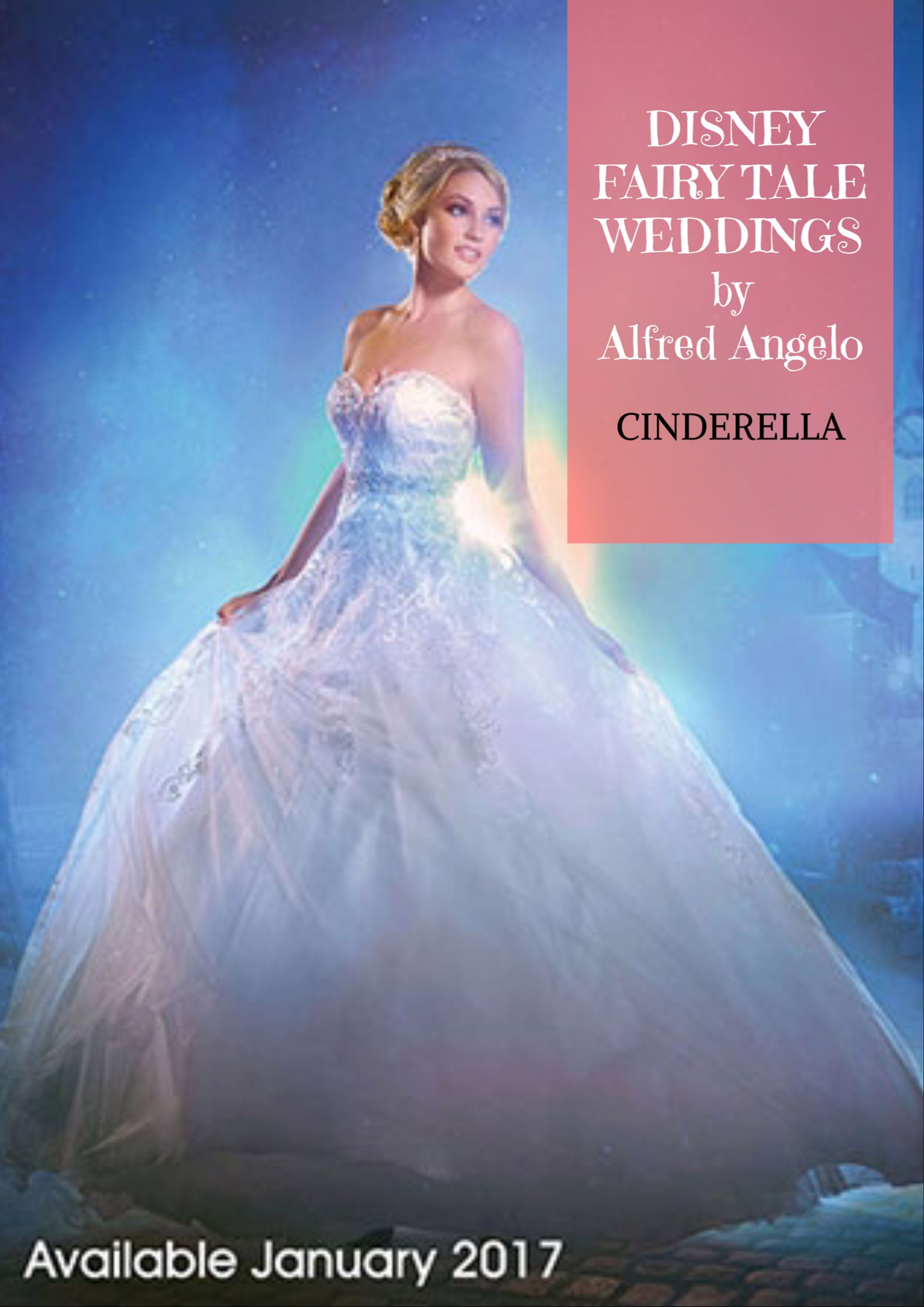 Book Disney Princess Wedding Dresses