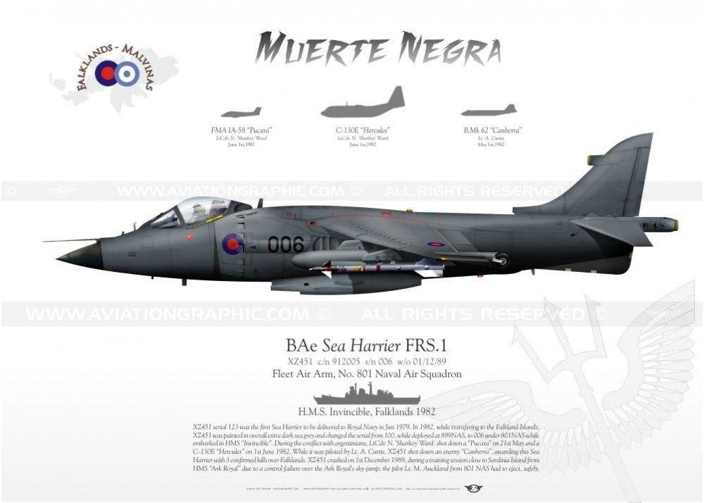 SEA HARRIER 801 NAVAL AIR SQUADRON  PROFILE PRINT.