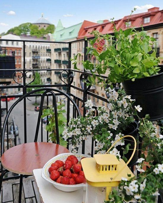 Balkon Ideen Blumenkasten Gelander – igelscout.info