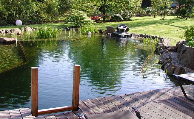 badeteich garten mit extras pinterest schwimmteich lebensr ume und garten terrasse. Black Bedroom Furniture Sets. Home Design Ideas