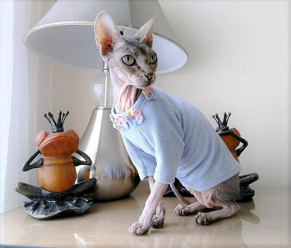 Katze-Kleidung / Katze Pyjamas / von ABCSphynx auf Etsy | Chantal ...