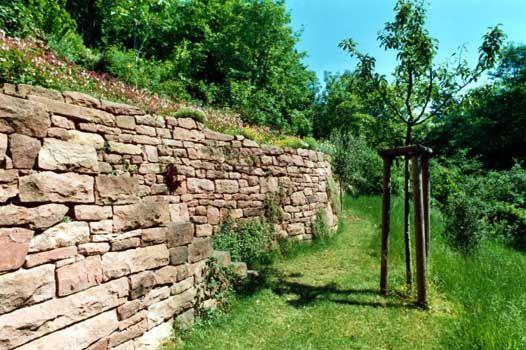 Gartenbau, Landschaftsbau, Hausgarten, Trockenmauern, Sichtschutz