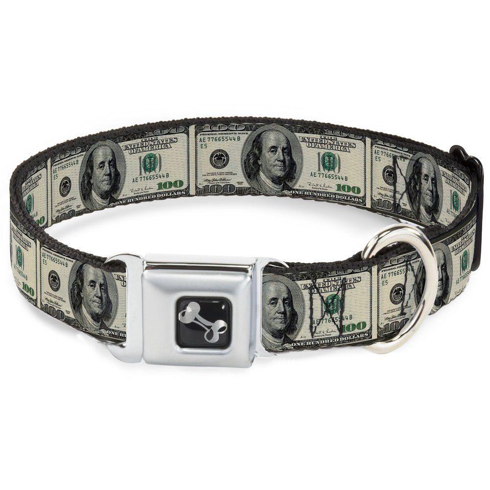Benjamin Franklin One Hundred 100 Dollar Bill Fun Animal