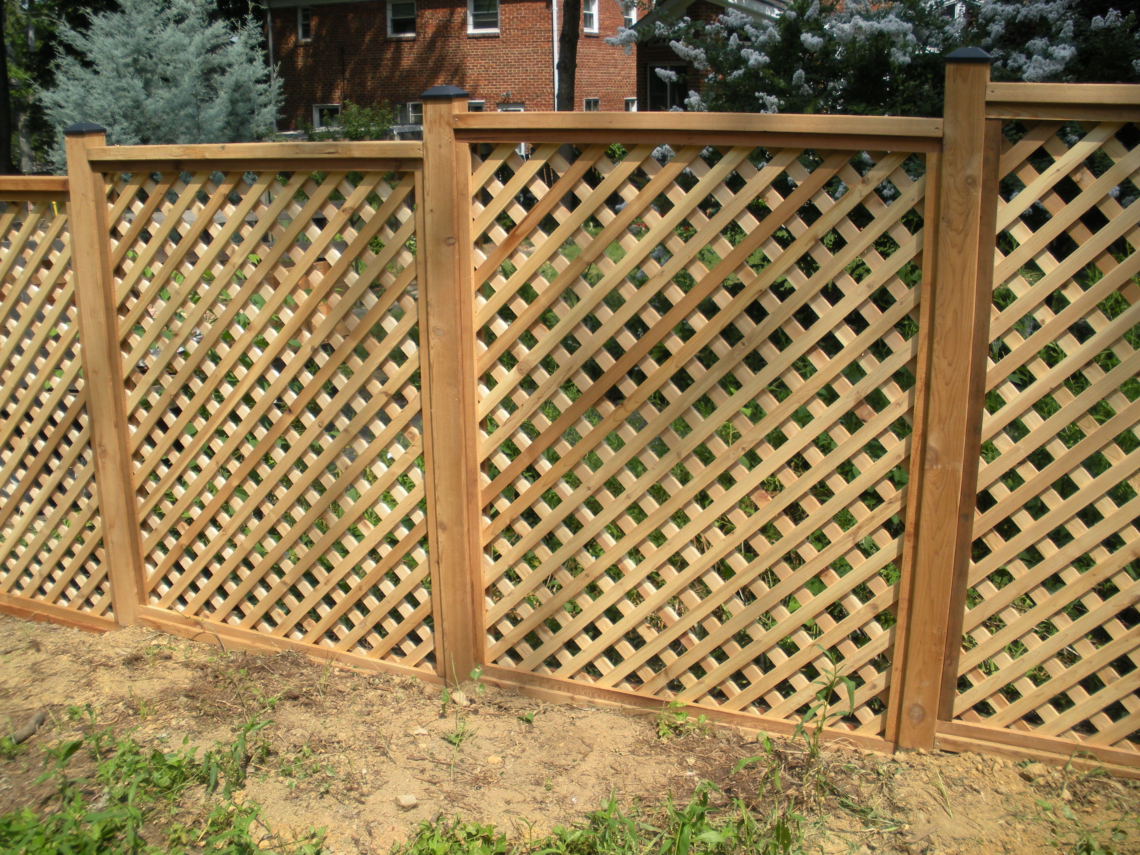 use lattice for a fence - Google Search | fence scaping | Pinterest ...