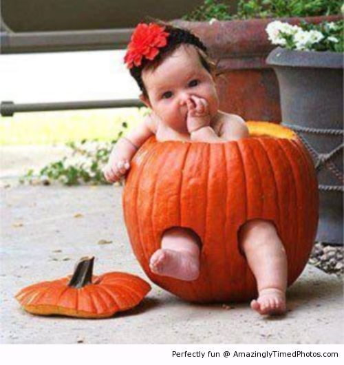 Amazingly Timed Photos | Cute baby in Pumpkin