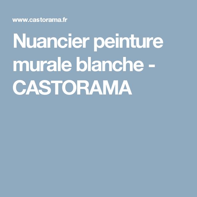 Nuancier Peinture Murale Blanche Castorama Nuancier