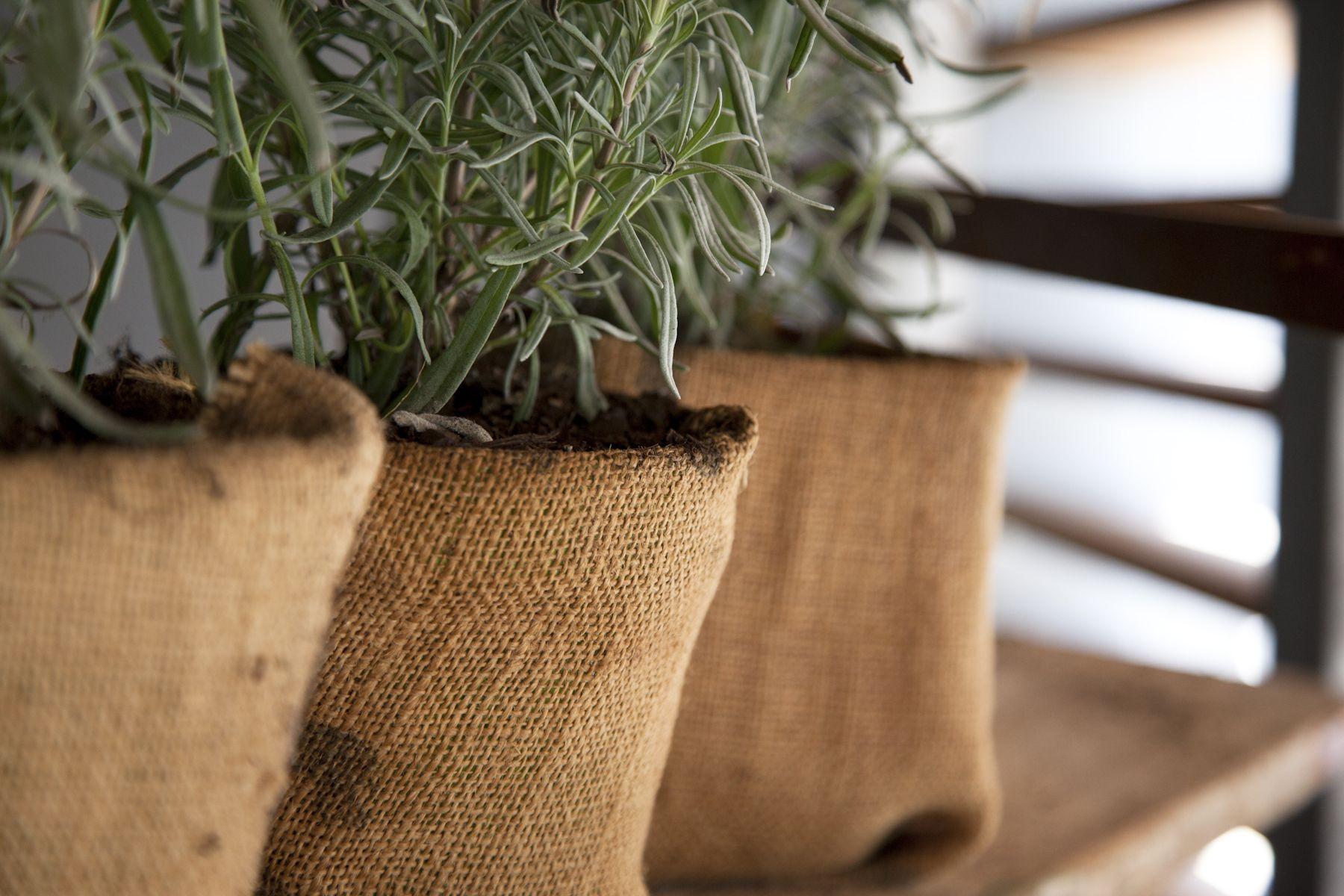 Macetas forradas con tela de saco elena pinterest - Manualidades con tela de saco ...