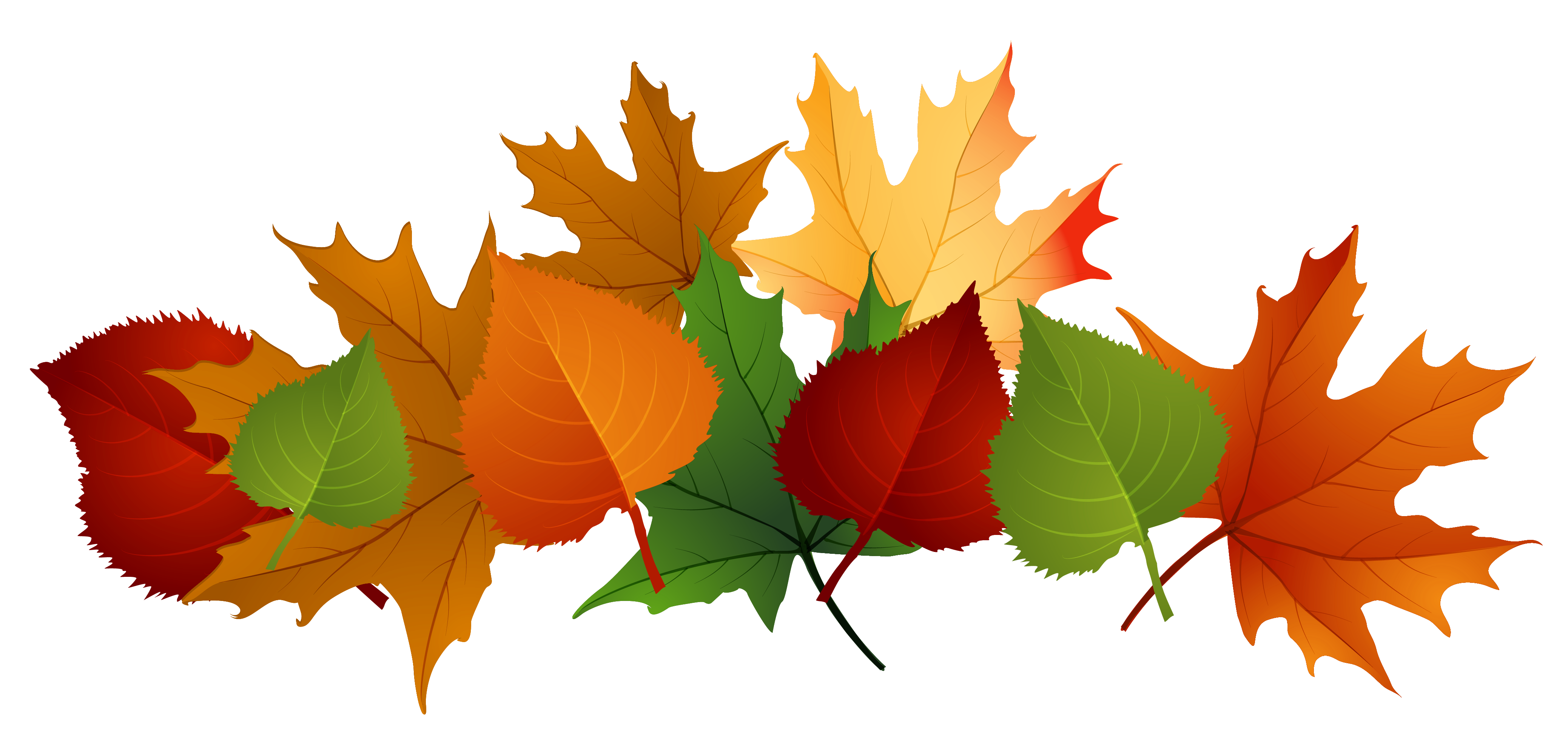Clip Art Clipart Fall Leaves fall leaves autumn and clip art on pinterest