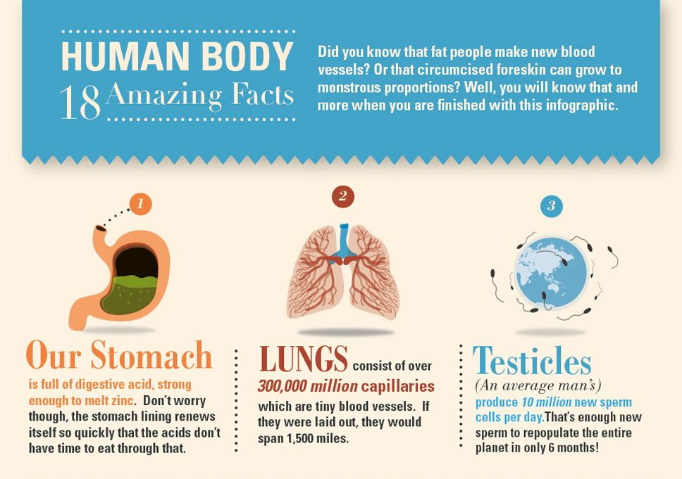 Amazing Facts With Pictures - Widescreen HD Wallpapers | Amazing ...