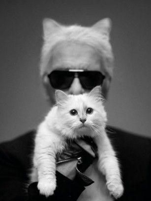 Karl #Lagerfeld: Twitter-famous #Cat Choupette models for Shu Uemura   - marie France asia