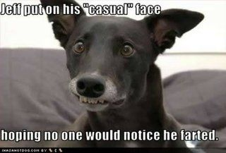 Jeff Casual Face Dog Photo By Ofchorus Photobucket Funny