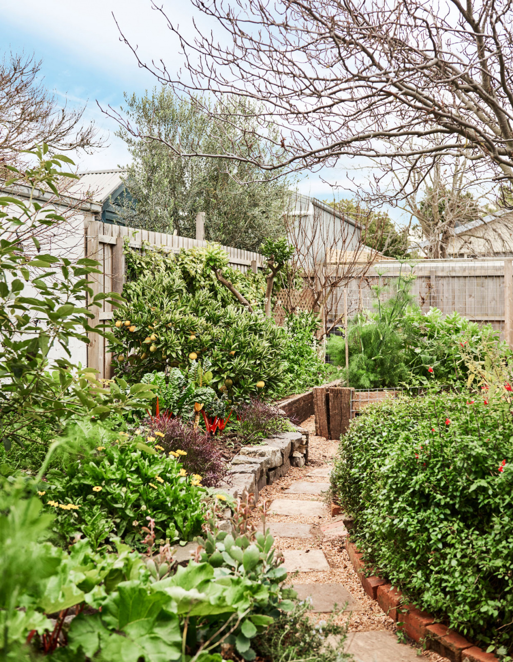 A Gorgeous Geelong Home With A Seriously Thriving Garden Is For Sale In 2020 Thriving Garden Landscaping Inspiration Hardscape Design