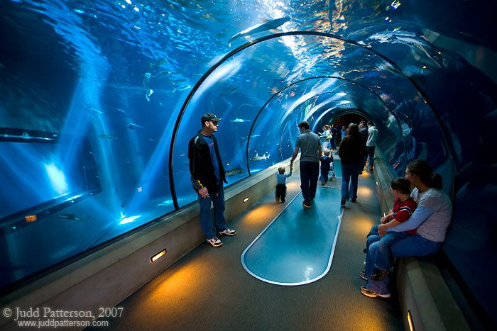 Newport Aquarium Oregon I Actually Was Here But We Didn T Go In Had No Idea What Missing Out On