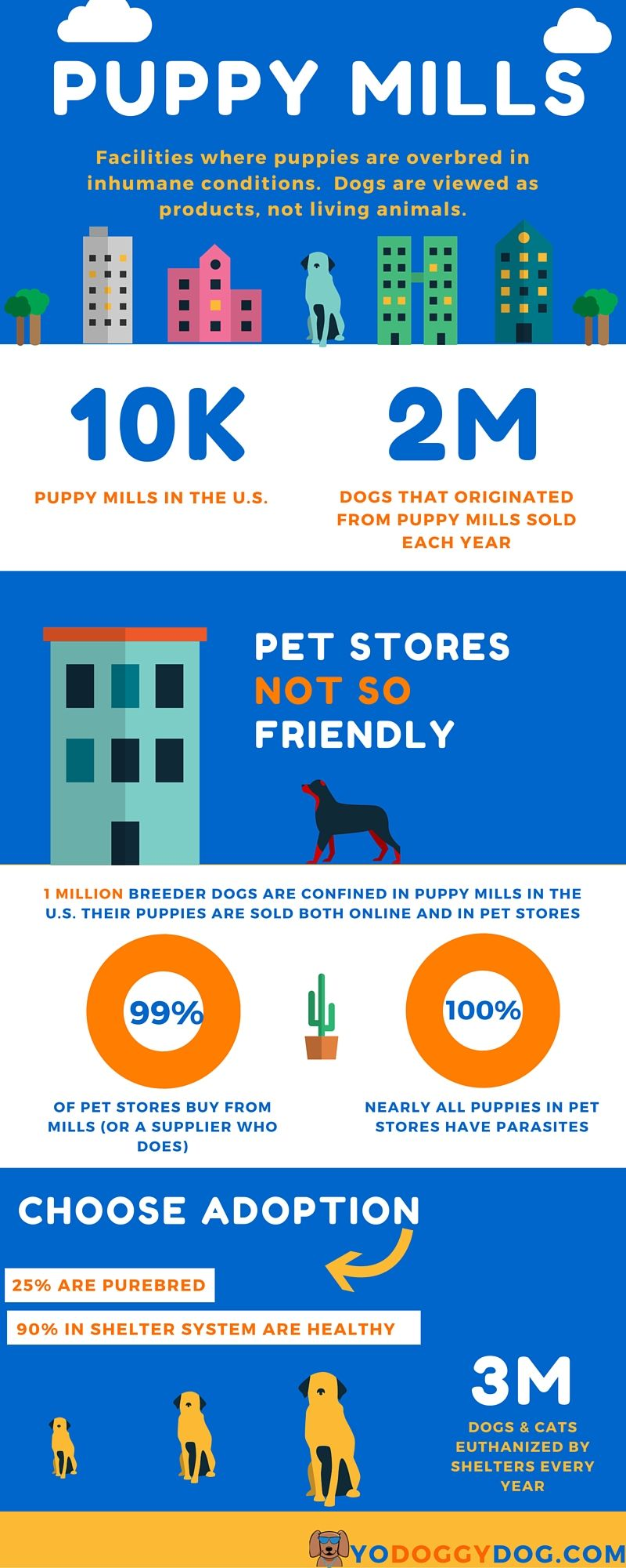 What Everyone Ought to Know about Puppy Mills | Yo Doggy Dog