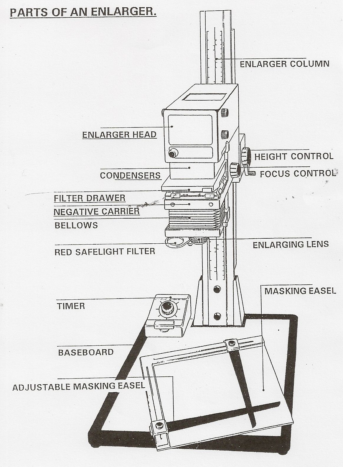 Parts Of An Enlarger